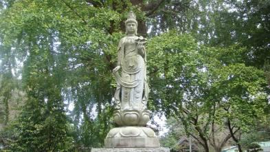 Kannon Bosatsu, Tamonin